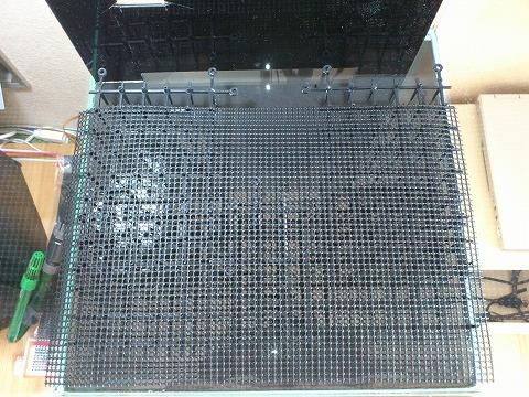 水槽リセット 大磯砂 121012