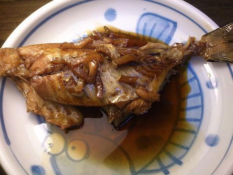 伊良湖 2013/09/22 アイゴ 煮つけ